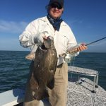 Tripletail on fly